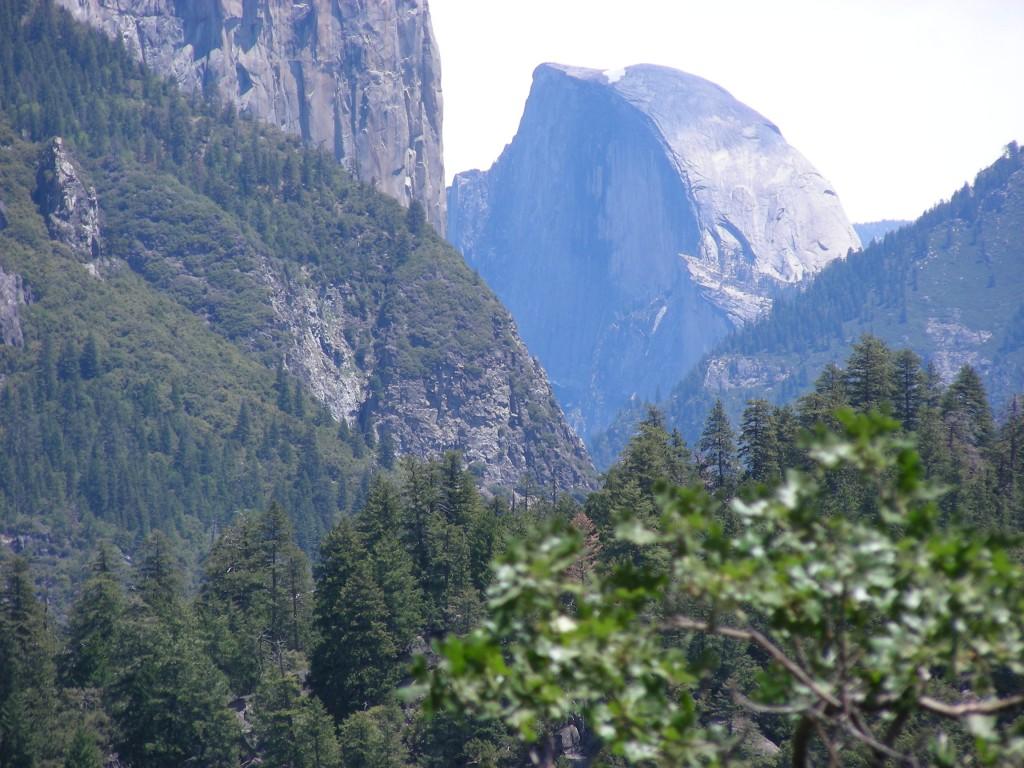 Yosemite May 2008 009